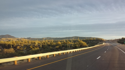 Wüste Arizonas